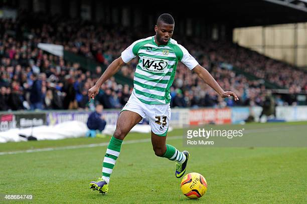 Joel Grant of Yeovil Town in action during the Sky Bet Championship match between Yeovil Town and Leeds United at Huish Park on February 08 2014 in...