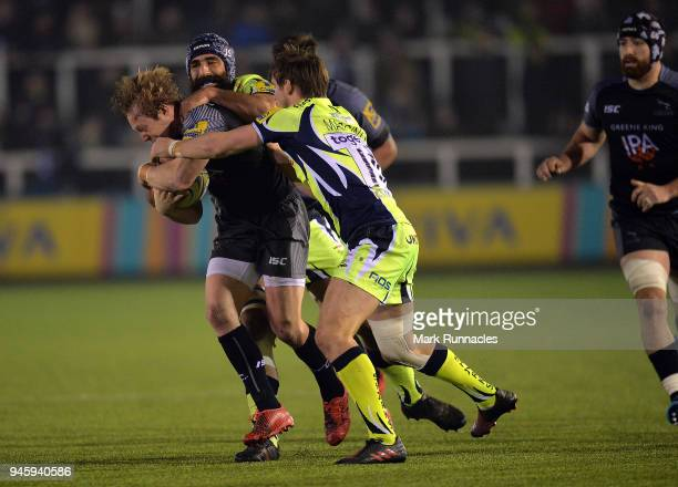 Joel Hodgson of Newcastle Falcons is tackled by AJ MacGinty of Sale Sharks during the Aviva Premiership match between Newcastle Falcons and Sale...