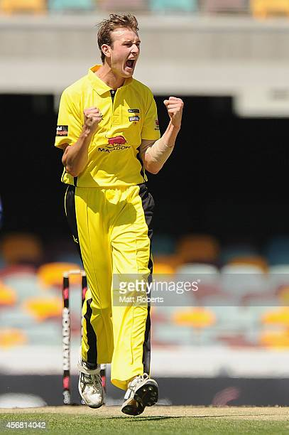 Joel Paris of the Warriors celebrates the wicket of Travis Head of the Redbacks during the Matador BBQs One Day Cup match between South Australia and...