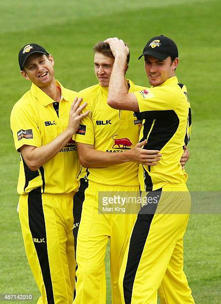 Joel Paris of the Warriors celebrates with team mates after taking the wicket of Tim Paine of the Tigers during the Matador BBQs One Day Cup match...