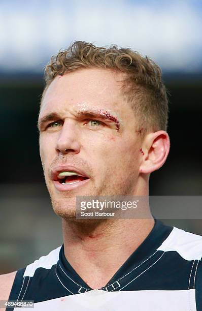 Joel Selwood captain of the Cats looks on during the round two AFL match between the Geelong Cats and the Fremantle Dockers at Simonds Stadium on...