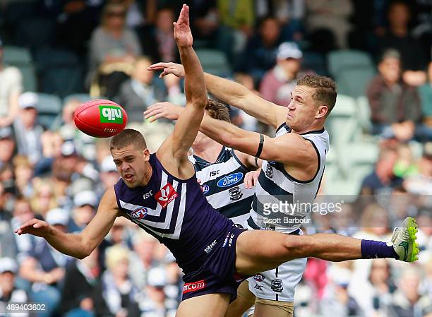 Joel Selwood of the Cats and Stephen Hill of the Dockers compete for the ball during the round two AFL match between the Geelong Cats and the...