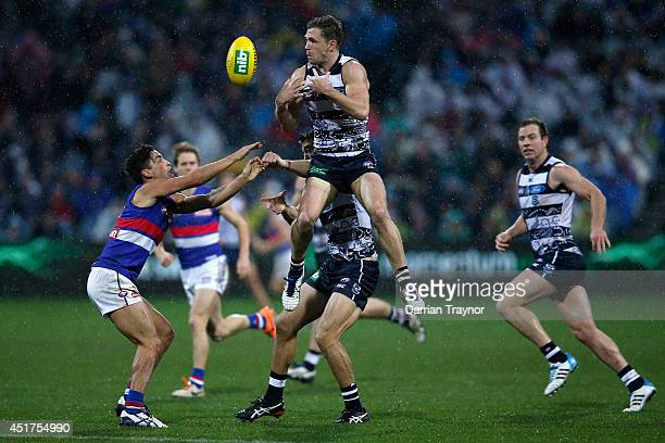 Joel Selwood of the Cats jumps at the ball during the round 16 AFL match between the Geelong Cats and the Western Bulldogs at Skilled Stadium on July...