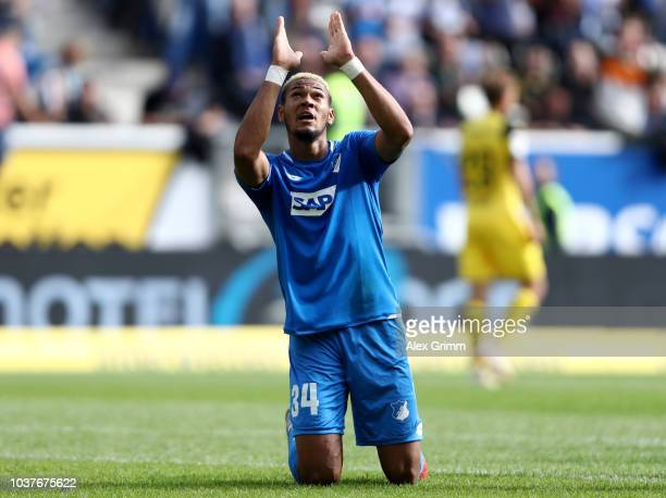 Joelinton of 1899 Hoffenheim celebrates after scoring his team's first goal during the Bundesliga match between TSG 1899 Hoffenheim and Borussia...