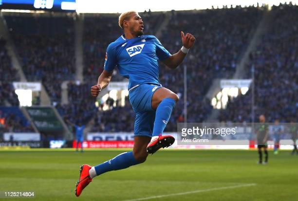 Joelinton of 1899 Hoffenheim celebrates after scoring his team's first goal during the Bundesliga match between TSG 1899 Hoffenheim and Hannover 96...