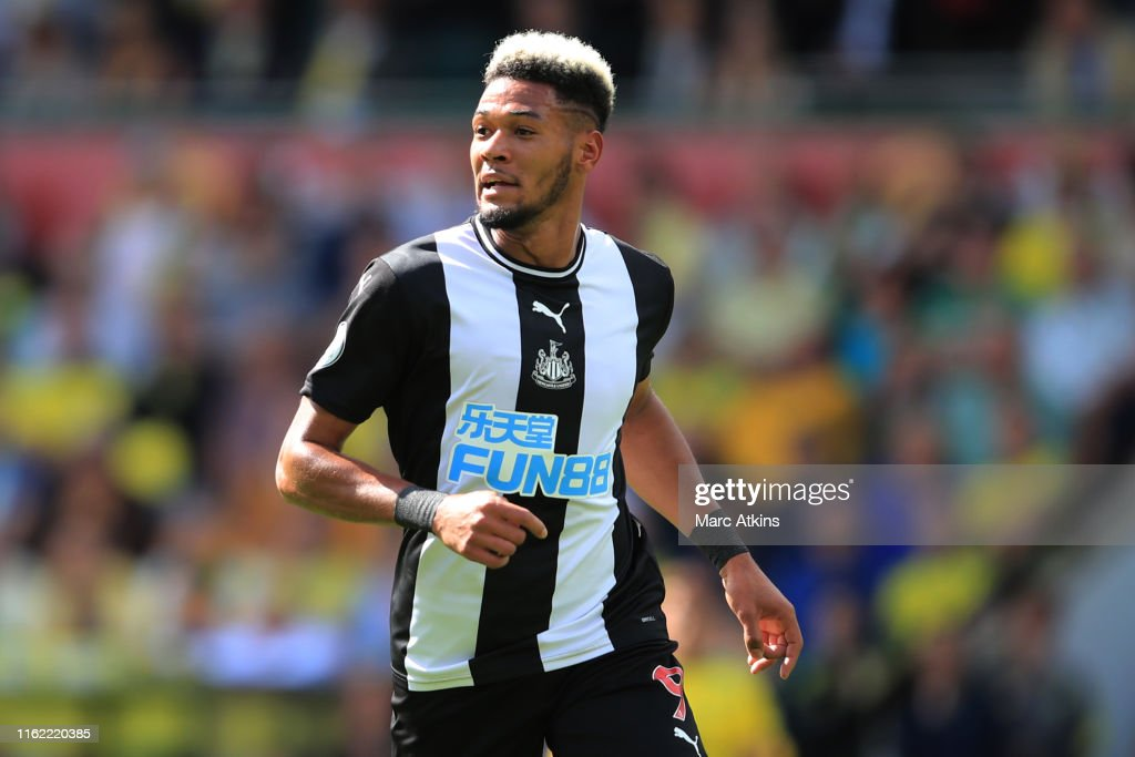 Norwich City v Newcastle United - Premier League : ニュース写真