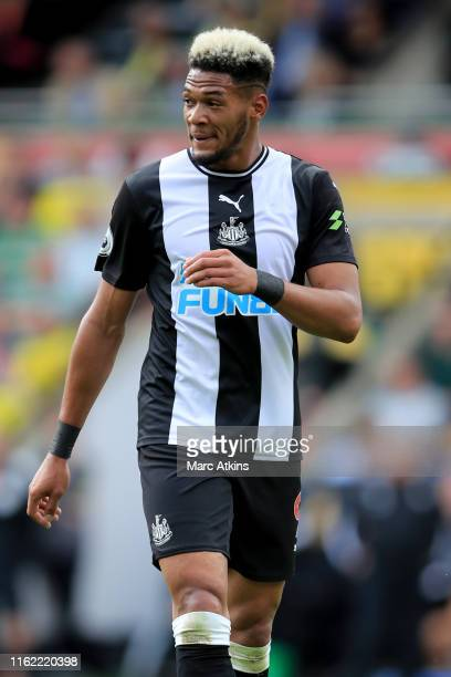 Joelinton of Newcastle United during the Premier League match between Norwich City and Newcastle United at Carrow Road on August 17 2019 in Norwich...
