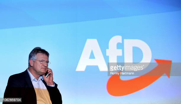 Joerg Meuthen leading member of the rightwing Alternative for Germany political party attends the AfD congress ahead of elections to the European...