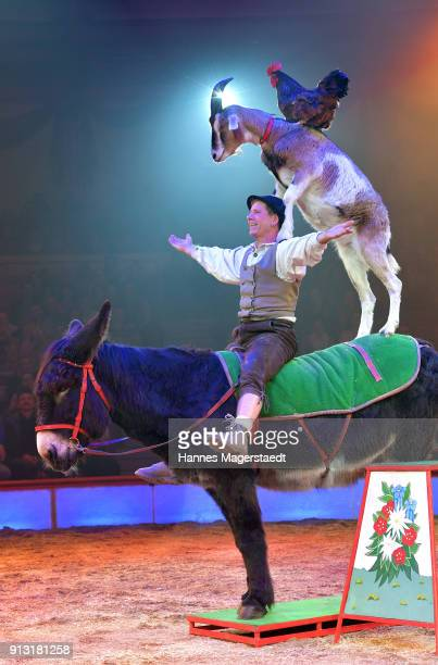 Joerg Probst during Circus Krone celebrates premiere of 'Hommage' at Circus Krone on February 1 2018 in Munich Germany