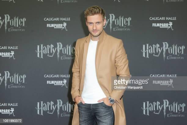 Joern Schloenvoigt attends the 'Harry Potter: The Exhibition' VIP opening at Filmpark Babelsberg on October 12, 2018 in Potsdam, Germany.