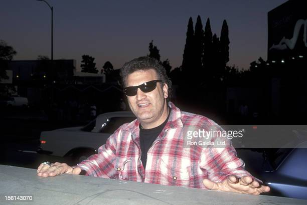 Joey Buttafuoco attends the Ford Models Party on March 26 1995 at Chateau Marmont in West Hollywood California