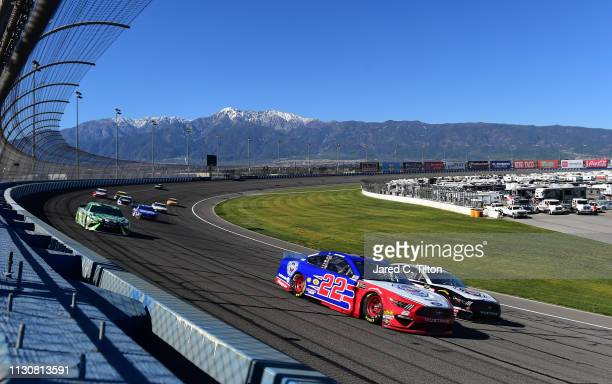 Joey Logano driver of the AAA Southern California Ford and Kevin Harvick driver of the Jimmy John's Ford lead a pack of cars during qualifying for...