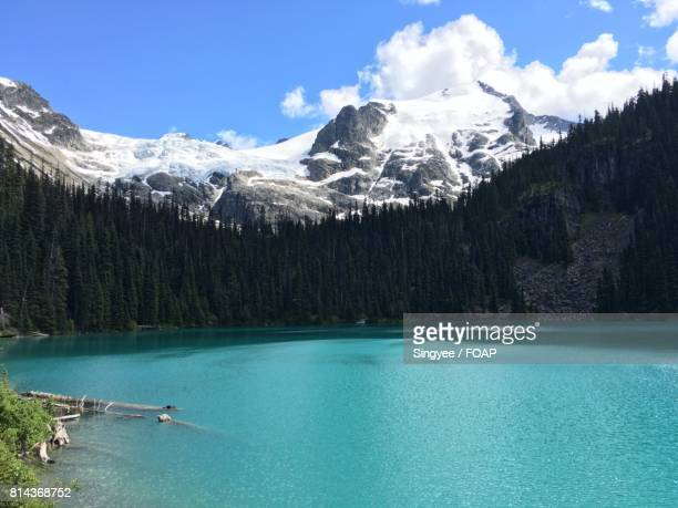 Joffre Lake with trees