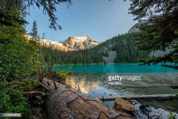 joffre lakes provincial park at sunset, bc, canada - norden stock-fotos und bilder