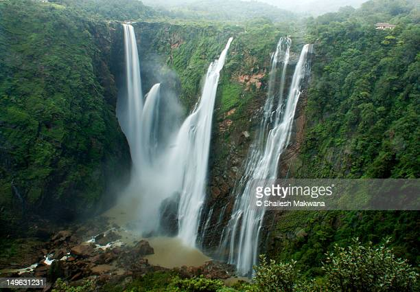 jog falls - karnataka stock pictures, royalty-free photos & images