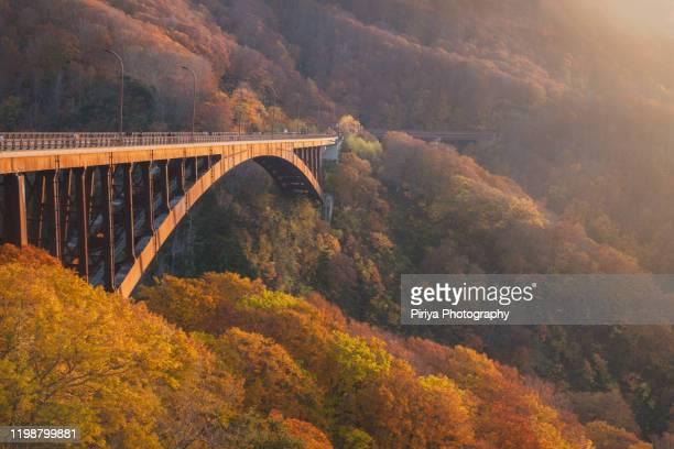 jogakura bridge in tohoku japan autumn - aomori prefecture stock pictures, royalty-free photos & images