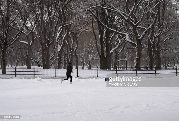 A jogger and a dog run through snow in Central Park in New York March 21 2018 as the fourth nor'easter in a month hits the tristate area on the first...