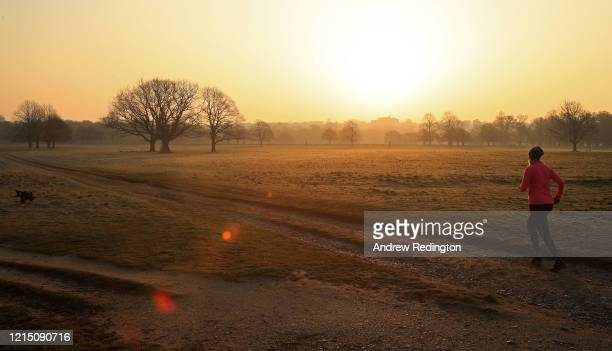 A jogger and her dog are pictured as the sun rises in Richmond Park on March 27 2020 in London England The royal parks have remained open as the...