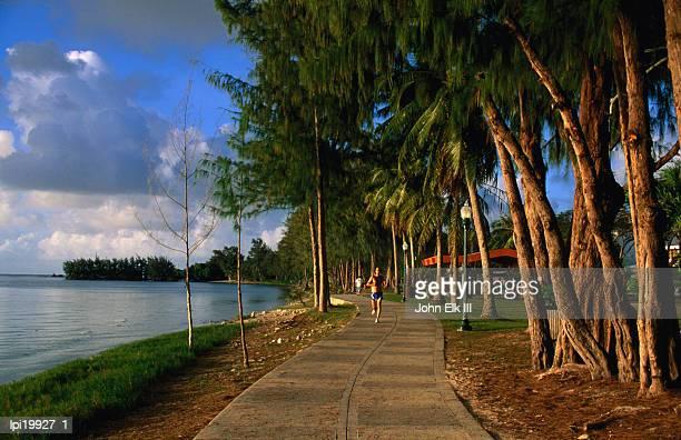 jogger on beach road park path, garapan, northern mariana islands - saipan stock pictures, royalty-free photos & images
