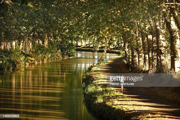 A jogger runs on the bank of the Canal Du Midi on August 27 2011 in VilleneuvelesBeziersFrance The French government has decided to cut 42000 planes...