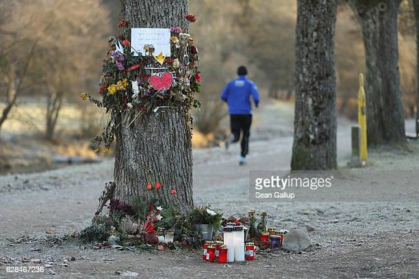 A jogger runs past flowers and messages left by mourners that adorn a tree near the spot where Maria L a 19yearold medical student was raped and...