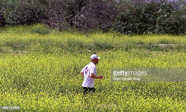 A jogger runs through a field of mustard greens at the Sepulveda Dam Recreation Area as the sun burns through the marines layer latye Friday...