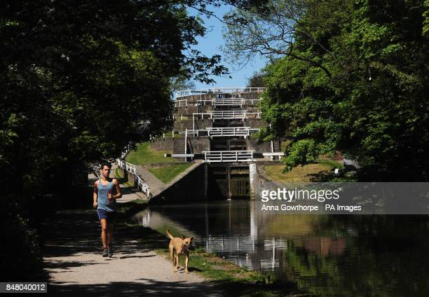 A jogger runs with his dog along the Leeds and Liverpool Canal at Five Rise Locks Bingley West Yorkshire as the warm weather continues across the UK