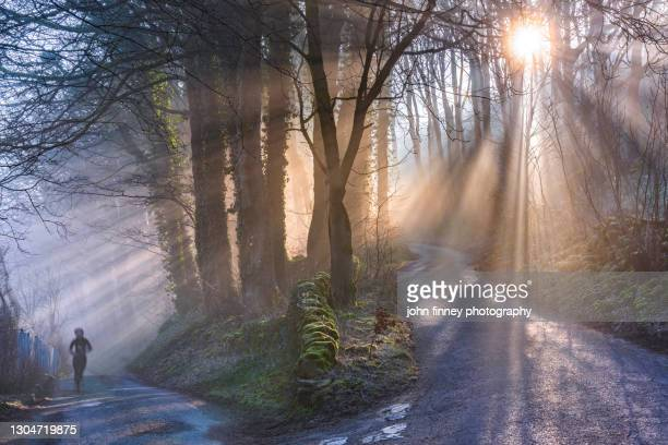 jogging in a woodland wonderland, castleton, derbyshire, peak district. uk - business finance and industry stock pictures, royalty-free photos & images