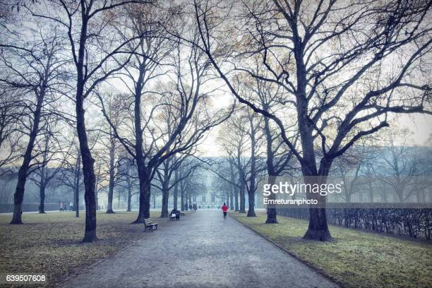 jogging in the court garden of munich residence. - emreturanphoto stockfoto's en -beelden