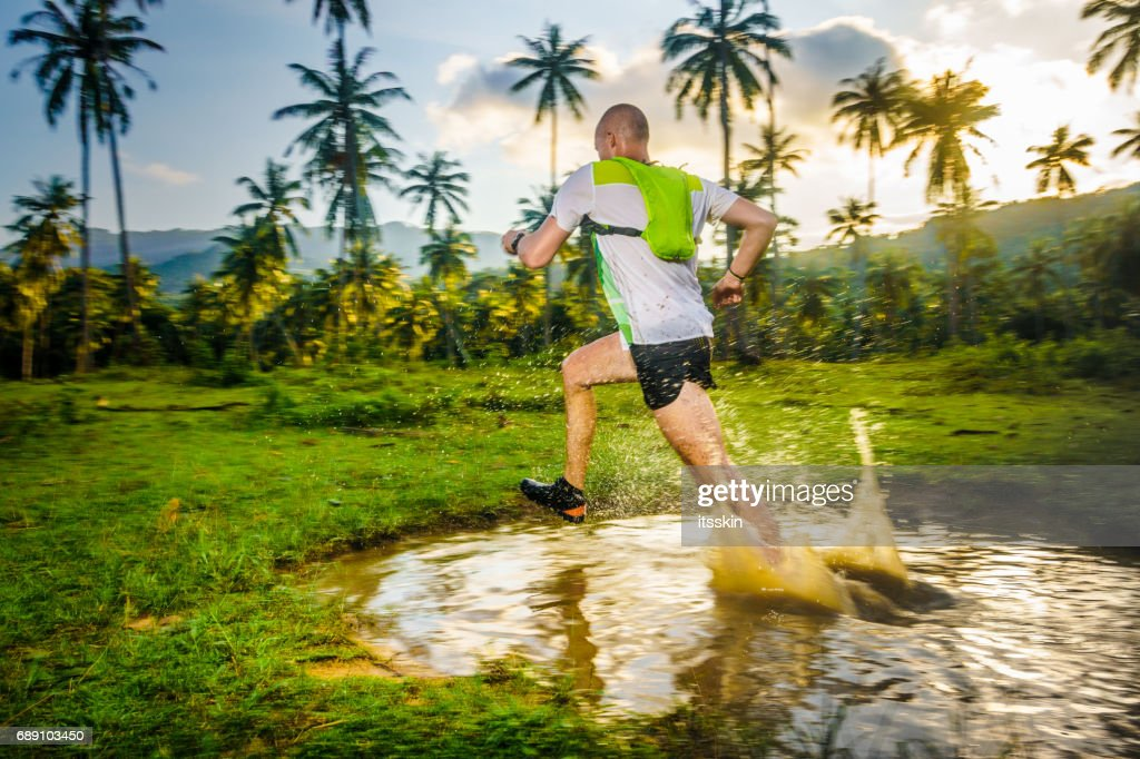 Jogging in the tropical forrest : Stock Photo
