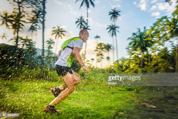 Jogging in the tropical forrest
