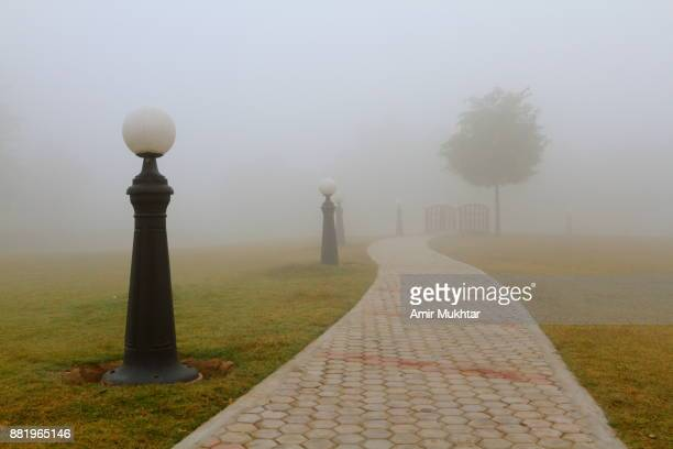 Jogging Track In The Fog