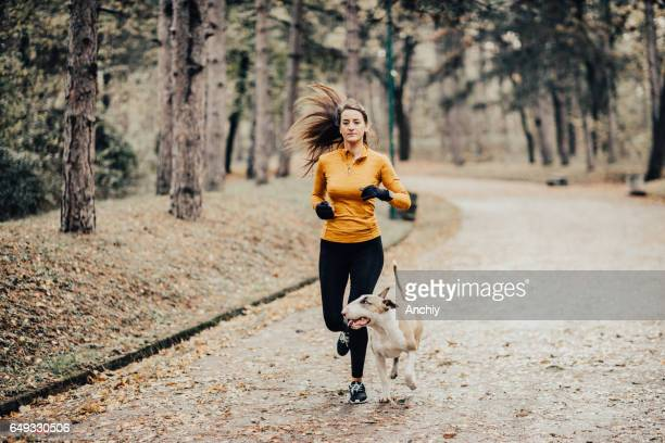 jogging with a dog on a cold day during autumn - bull terrier stock photos and pictures