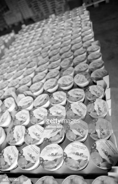 Joghurt auf Halde dieser Königs Wusterhausener Milchverarbeitungsbetrieb kämpft in der Wendezeit um sein Überleben HO und Konsum wollen die Produkte...