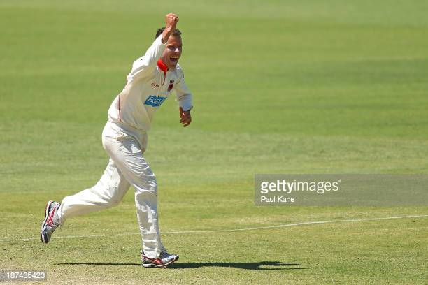 Johan Botha of the Redbacks celebrates dismissing Mitchell Marsh of the Warriors during day four of the Sheffield Shield match between the Western...