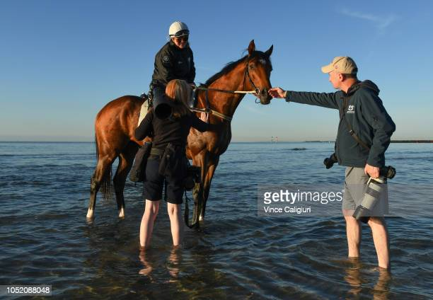 Johanne Taylor riding The Autumn Sun gives the media a close up look at yesterdays group one Caulfield Guineas winner after a beach session at Altona...