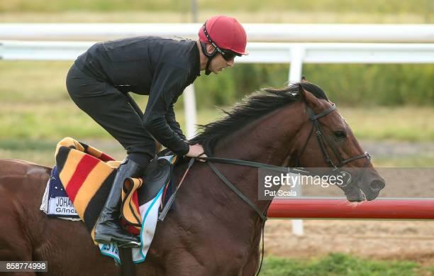 Johannes Vermeer during trackwork at Werribee Racecourse on October 08 2017 in Werribee Australia