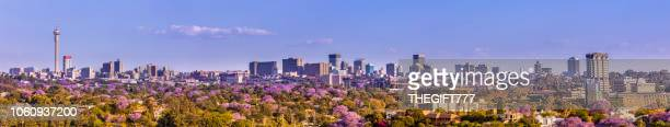 johannesburg cityscape panorama seen from the west - panoramic stock pictures, royalty-free photos & images