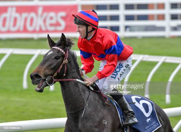 John Allen returns to the mounting yard aboard Verry Elleegant after winning New Zealand Bloodstock Ethereal Stakes at Caulfield Racecourse on...