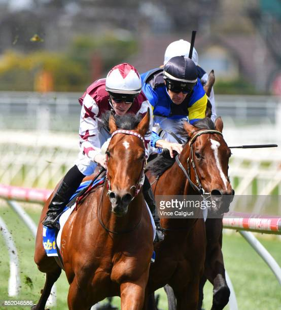 John Allen riding Cliff's Edge defeats Dwayne Dunn riding Sunquest in Race 2 during Melbourne Racing at Caulfield Racecourse on September 23 2017 in...