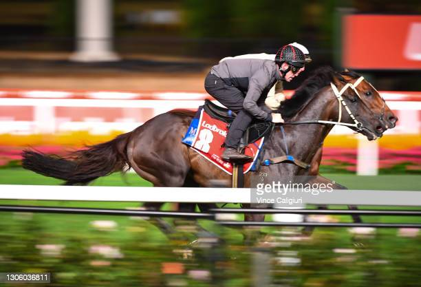 John Allen riding Sir Dragonet during a trackwork session ahead of the All Star Mile, at Moonee Valley Racecourse on March 09, 2021 in Melbourne,...