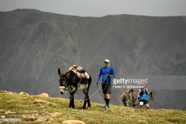 John Anderson and his donkey Miss Money Penny near the summit of Mosquito Pass as they take part in the 70th annual World Championship Pack Burro...