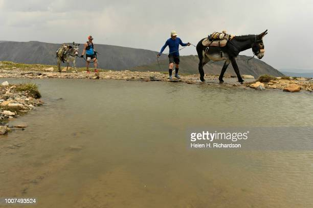 John Anderson tries to encourage his donkey Miss Money Penny to cross water as the duo head towards the summit of Mosquito Pass as they take part in...