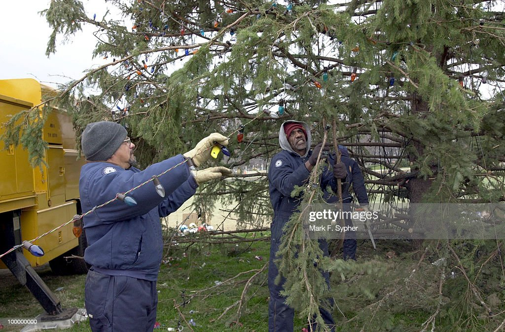 John Cambell (left) and Ronald Neal (right) carefully undecorate the lights while Jim Brumfield (background) uses a chainsaw to remove the branches.