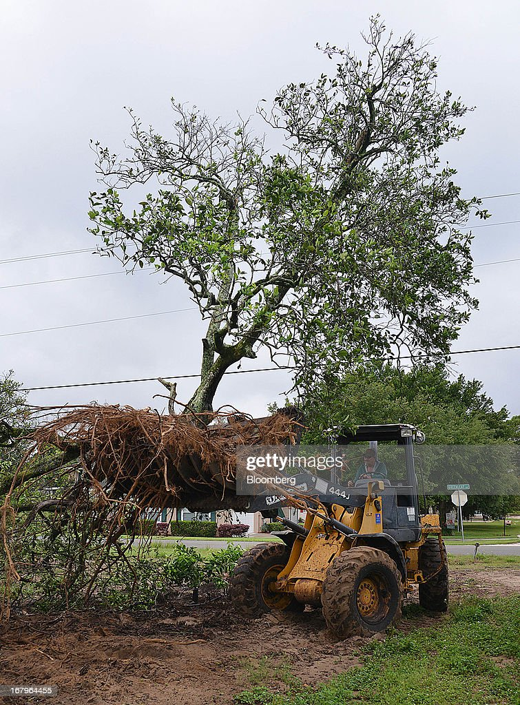 A John Deere 444J uproots a Valencia orange tree infected with bacteria from the Asian Citrus Psyllid insect at the Reynolds Farm in Lake Placid, Florida, U.S., on Thursday, May 2, 2013. The U.S. Department of Agriculture probably will lower its estimate for Florida's orange output as unusually dry weather compounds damage from citrus greening, a crop disease that cuts yields. Photographer: Mark Elias/Bloomberg via Getty Images