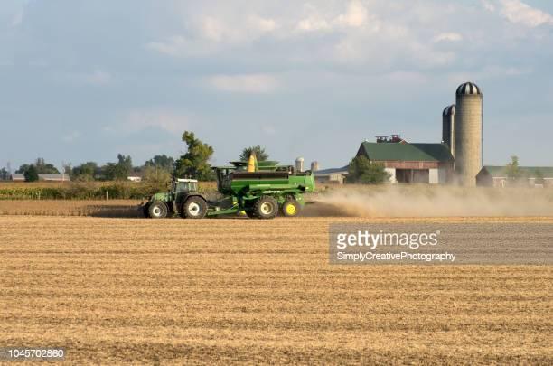John Deere Combine Harvesting Soy Beans