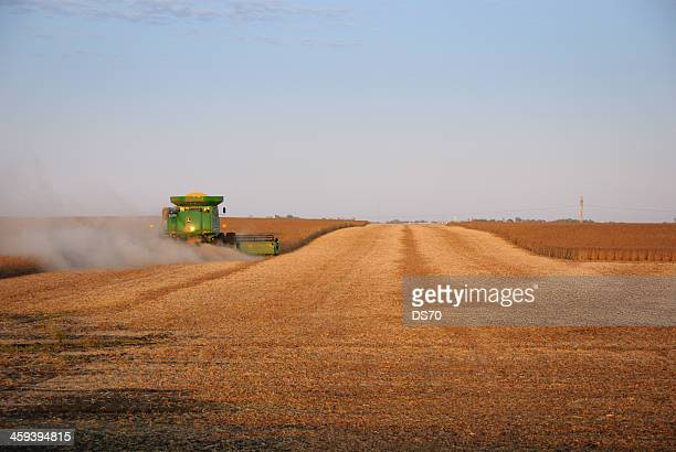 john deere combine harvesting soybeans - john deere stock pictures, royalty-free photos & images
