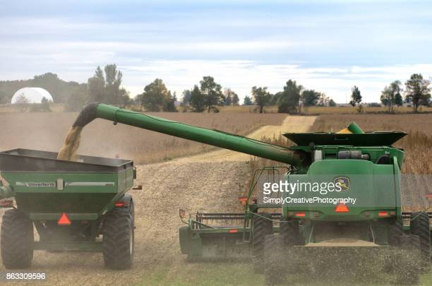 john deere combine harvesting soybeans - threshing stock photos and pictures
