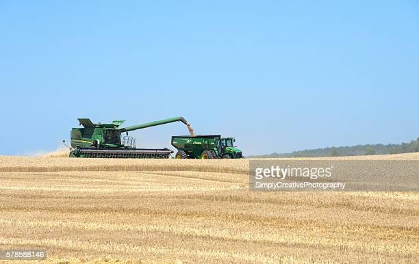 john deere combine harvesting wheat - john deere stock pictures, royalty-free photos & images
