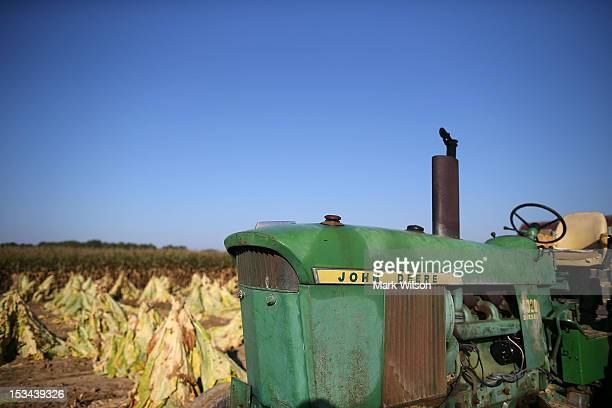 John Deere tractor sits in the middle of field of freshly cut tobacco leaves on October 5 2012 in Owings Maryland Most of the Tobacco crops in...